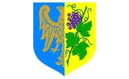 Starostwo Powiatowe w Strzelcach Opolskich